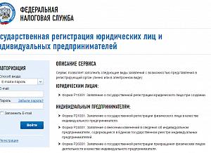 Регистрация ип через сайт налоговой службы образец декларации 3 ндфл за 2019 при покупке квартиры